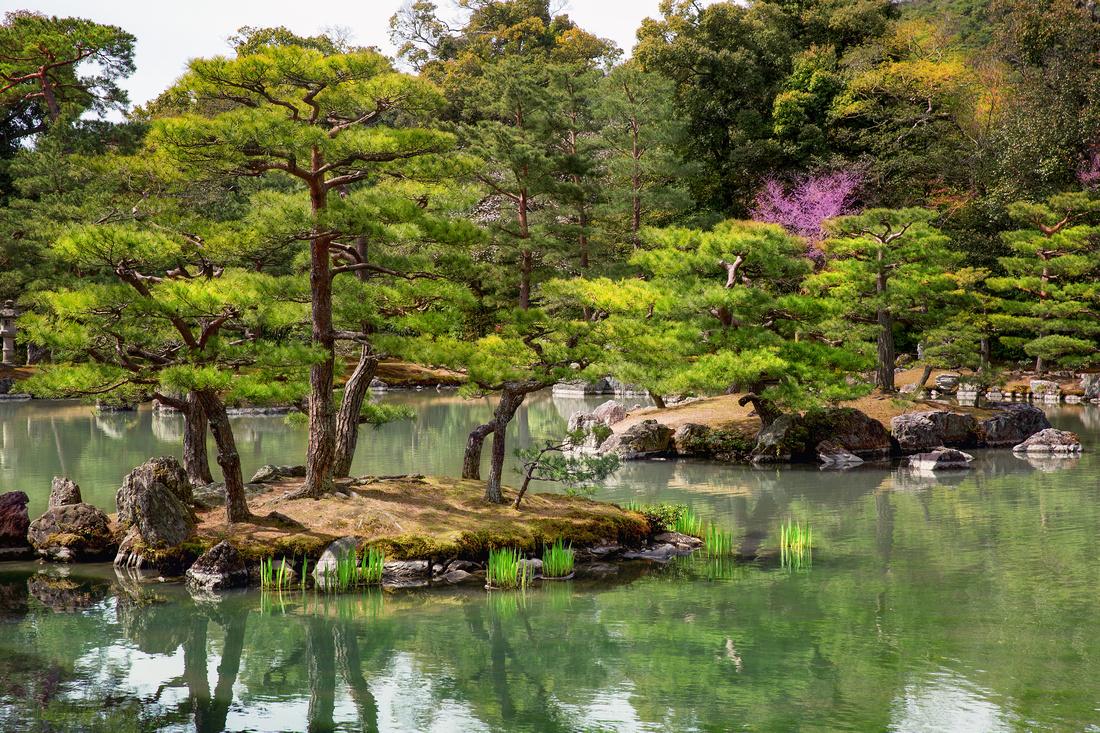 28 - Kyoto, Japan